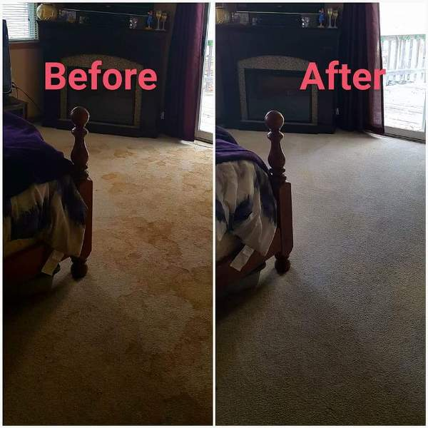 Environmentally Friendly Carpet Cleaning Kleen Up Pros Inc